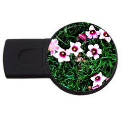 Pink Flowers Over A Green Grass Usb Flash Drive Round (4 Gb)  by DanaeStudio