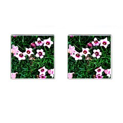 Pink Flowers Over A Green Grass Cufflinks (square) by DanaeStudio