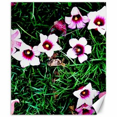 Pink Flowers Over A Green Grass Canvas 8  X 10