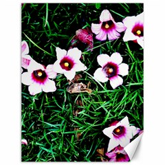 Pink Flowers Over A Green Grass Canvas 12  X 16