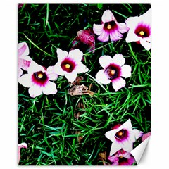 Pink Flowers Over A Green Grass Canvas 16  X 20