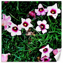 Pink Flowers Over A Green Grass Canvas 20  X 20