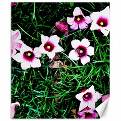 Pink Flowers Over A Green Grass Canvas 20  X 24
