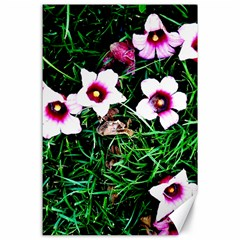 Pink Flowers Over A Green Grass Canvas 24  X 36  by DanaeStudio