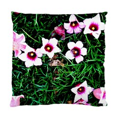 Pink Flowers Over A Green Grass Standard Cushion Case (two Sides)