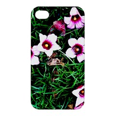 Pink Flowers Over A Green Grass Apple Iphone 4/4s Premium Hardshell Case by DanaeStudio