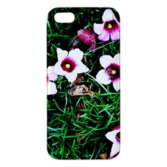 Pink Flowers Over A Green Grass Apple Iphone 5 Premium Hardshell Case by DanaeStudio