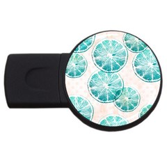 Turquoise Citrus And Dots Usb Flash Drive Round (4 Gb)  by DanaeStudio