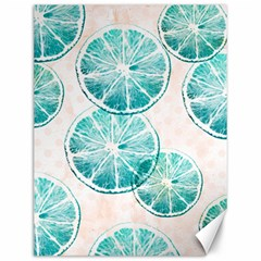 Turquoise Citrus And Dots Canvas 12  X 16   by DanaeStudio