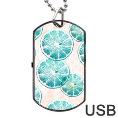 Turquoise Citrus And Dots Dog Tag Usb Flash (two Sides)  by DanaeStudio