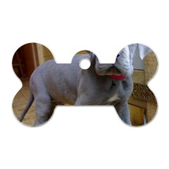 Great Dane Puppy Blue Dog Tag Bone (Two Sides) by TailWags