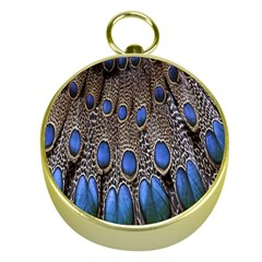 Feathers Peacock Light Gold Compasses by AnjaniArt