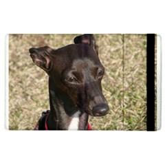 Italian Greyhound Apple Ipad 2 Flip Case by TailWags