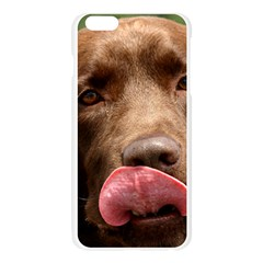 Chocolate Lab Apple Seamless iPhone 6 Plus/6S Plus Case (Transparent) by TailWags