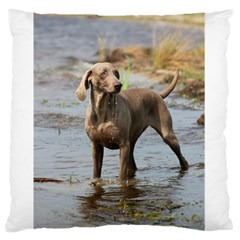 Weimaraner In Water Standard Flano Cushion Case (Two Sides) by TailWags