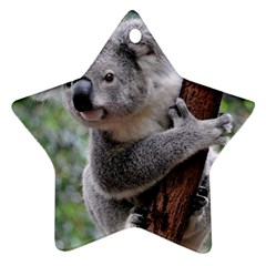 Koala Ornament (Star)  by AnjaniArt