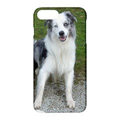 Blue Merle Border Collie Sitting Apple iPhone 7 Plus Hardshell Case by TailWags