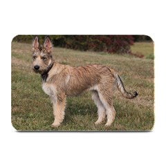 Berger Picard Puppy Plate Mats by TailWags