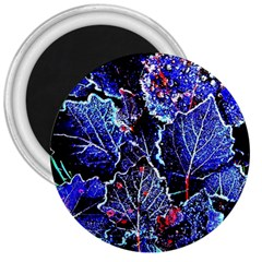 Blue Leaves In Morning Dew 3  Magnets by Costasonlineshop