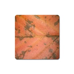 Red Leaf Texture Square Magnet by SamEarl13