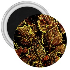 Leaves In Morning Dew,yellow Brown,red, 3  Magnets by Costasonlineshop