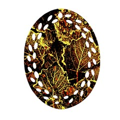 Leaves In Morning Dew,yellow Brown,red, Ornament (oval Filigree)