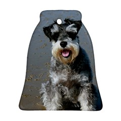 Mini Schnauzer At The Beach Bell Ornament (2 Sides) by TailWags