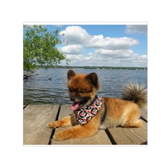 Pom Pup On Dock Small Satin Scarf (Square) by TailWags