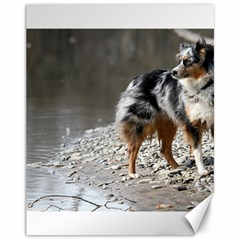 Australian Shepherd Blue Merle Full Canvas 11  x 14   by TailWags