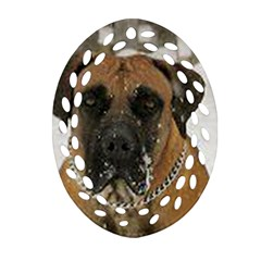 Boerboel  Ornament (Oval Filigree)  by TailWags