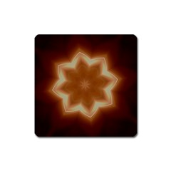 Christmas Flower Star Light Kaleidoscopic Design Square Magnet by yoursparklingshop