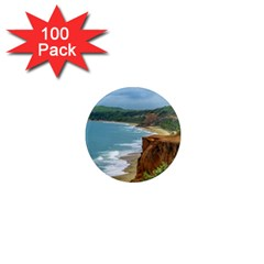 Aerial Seascape Scene Pipa Brazil 1  Mini Magnets (100 Pack)  by dflcprints