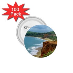 Aerial Seascape Scene Pipa Brazil 1 75  Buttons (100 Pack)  by dflcprints