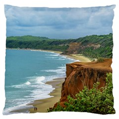 Aerial Seascape Scene Pipa Brazil Standard Flano Cushion Case (One Side) by dflcprints