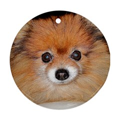 Pomeranian Round Ornament (Two Sides)