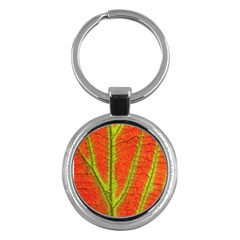 Unique Leaf Key Chains (round)  by AnjaniArt