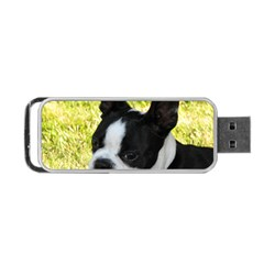 Boston Terrier Puppy Portable USB Flash (Two Sides) by TailWags