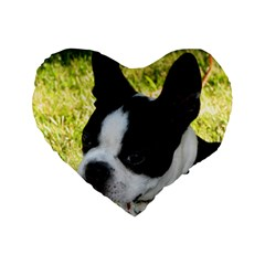 Boston Terrier Puppy Standard 16  Premium Flano Heart Shape Cushions by TailWags