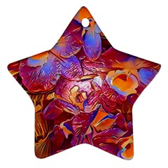 Floral Artstudio 1216 Plastic Flowers Star Ornament (two Sides)