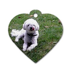 Bolognese Full Dog Tag Heart (Two Sides) by TailWags