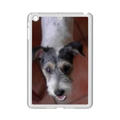 Parson Russell Terri?r Looking Up iPad Mini 2 Enamel Coated Cases by TailWags
