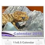 jane Calendar - Wall Calendar 11  x 8.5  (12-Months)
