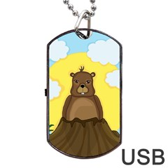 Groundhog Day  Dog Tag Usb Flash (two Sides)  by Valentinaart
