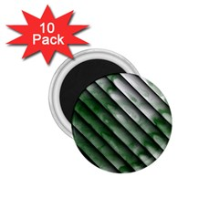 Green Bamboo 1.75  Magnets (10 pack)  by AnjaniArt