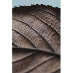 Leaf Veins Nerves Macro Closeup 5 5  X 8 5  Notebooks by Amaryn4rt