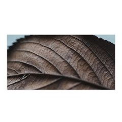 Leaf Veins Nerves Macro Closeup Satin Wrap by Amaryn4rt