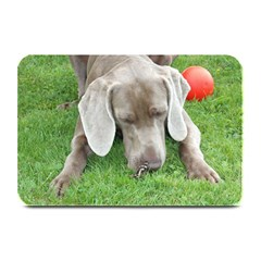 Weim W Butterfly Plate Mats by TailWags
