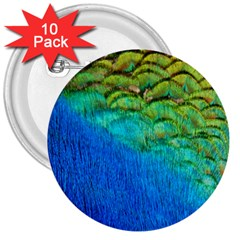 Blue Peacock Feathers 3  Buttons (10 Pack)  by Jojostore