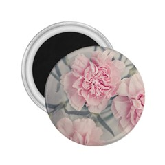 Cloves Flowers Pink Carnation Pink 2 25  Magnets by Amaryn4rt