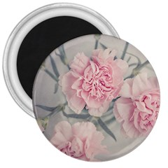 Cloves Flowers Pink Carnation Pink 3  Magnets by Amaryn4rt